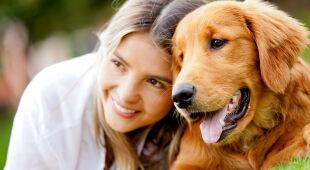 """Niemieckie władze chcą, by psy były wyprowadzane częściej. Magazyn """"Polska i Świat"""""""