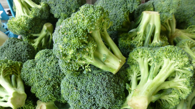 Brokuł - jedno z najzdrowszych warzyw na świecie
