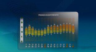 Prognoza pogody na 16 dni/TVN Meteo